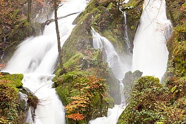 Stock Ghyll in autumn near Ambleside, Lake District, Cumbria, England, United Kingdom, Europe