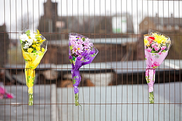 Flowers left in tribute to PC Bill Barker who was killed trying to stop traffic from going onto Northside Bridge when it collapsed, Workington , Cumbria, England, United Kingdom, Europe