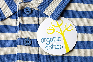 An organic cotton polo shirt