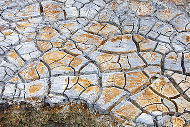 Mud cracks on the side of a geothermal hot spring in Hengill, Iceland, Polar Regions