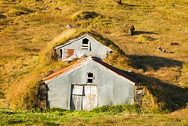 Traditional turf covered farm buidlings in the Skaftafell National Park, Iceland, Polar Regions