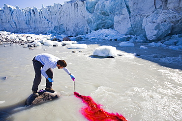 PHD scientist Ian Bartholomew using dye tracing techniques as part of a study to measure the speed of the Russell Glacier near Kangerlussuaq, Greenland, Polar Regions