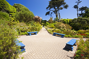 The Abbey gardens on Tresco, Scilly Isles, off South West Cornwall, United Kingdom, Europe