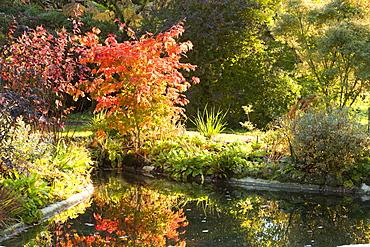 Holehird gardens in Windermere in autumn, Lake District, Cumbria, England, United Kingdom, Europe