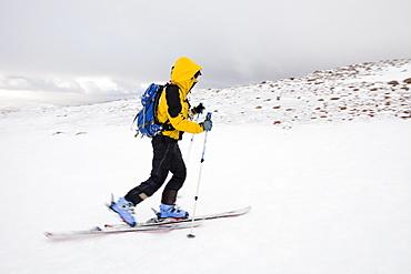 Ski mountaineering on the Cairngorm plateau, Cairgorm mountains, Scotland, United Kingdom, Europe
