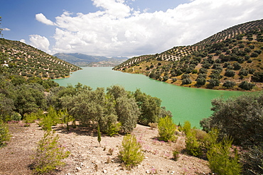 The Iznajar reservoir which powers a hydro electric power station near Antequera in Andalucia, Spain, Europe