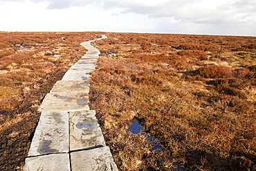 A stone flag path to combat erosion of the peat, towards the summit of Ilkley Moor, West Yorkshire, England, United Kingdom, Europe