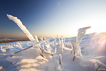 Hoar frost on grass on Red Screes in the Lake District, Cumbria, England, United Kingdom, Europe