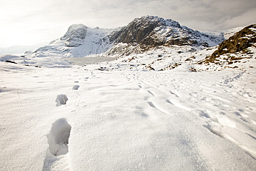 Footsteps in the snow above Stickle Tarn, looking towards Pavey Ark in the Langdale Valley, Lake District, England, England, United Kingdom, Europe
