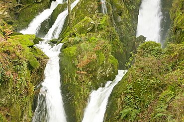 Stock Ghyll waterfall, Ambleside, Lake District, Cumbria, England, United Kingdom, Europe