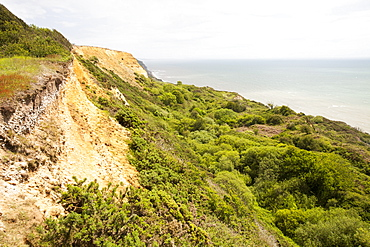 A landslip on the South West Coast Path at Charmouth, Jurassic Coast, UNESCO World Heritage Site, Dorset, England, United Kingdom, Europe