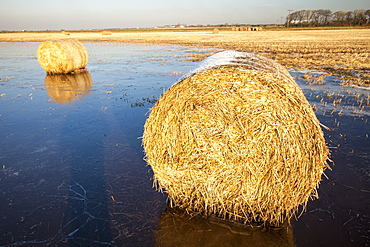 Straw bales on a flooded field on the Fylde, in Lancashire, England, United Kingdom, Europe