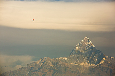 Motorised hang gliders giving flights to tourists from Pokhara, Nepal, Asia