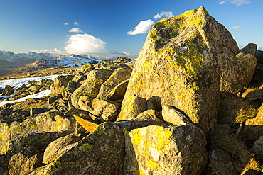 Lichen covered rocks on Swirl Howe above Wrynose, looking towards Langdale and the Scafell range, Lake District National Park, Cumbria, England, United Kingdom, Europe