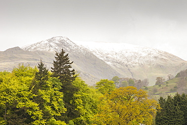 Fresh snow on the summit of Fairfield at the end of May, following one of the coldest Springs on record, Lake District National Park, Cumbria, England, United Kingdom, Europe