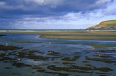 Low tide, Newport Beach, Newport, Pembrokeshire, Wales, UK, Europe