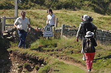 People walking on coast path, Deer Park, Marloes, Pembrokeshire, Wales, UK, Europe
