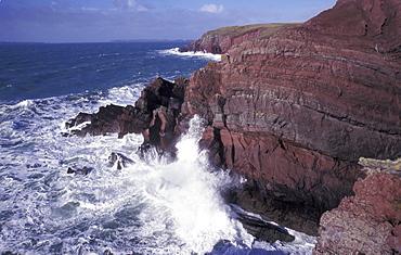 Old Red Sandstone seacliffs, St. Anne's Head, Pembrokeshire Coast National Park, West Wales, UK