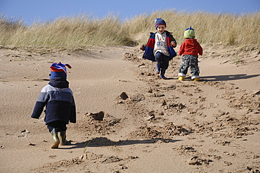 Three young boys playing in dunes, Broad Haven South, Stackpole, Pembrokeshire, Wales, UK, Europe