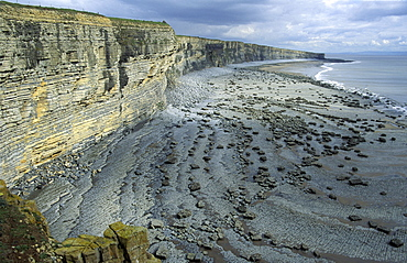 Sedimentary cliffs and Nash Point, Heritage Coast, Vale of Glamorgan, Wales, UK