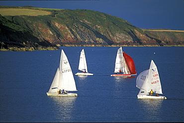 Dinghy race, Dale, West Wales, UK