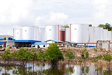 Factory for processing palm oil in mangroves, Balikpapan Bay, East Kalimantan, Borneo, Indonesia, Southeast Asia, Asia