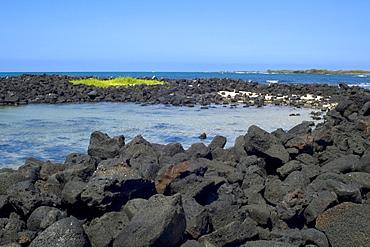 Bay near Kailua Kona, Big Island, Hawaii, United States of America, Pacific