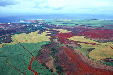 Aerial of sugar cane fields, Kauai, Hawaii, United States of America, Pacific