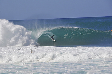 Surfer riding famous barrel waves, Oahu, Hawaii, United States of America, Pacific
