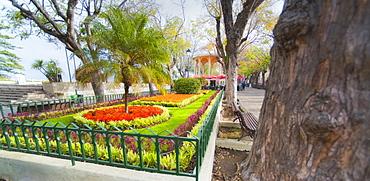 Plaza de la Constition, 08/04/2009, town square with gardens. Santa Cruz, La Orotava (world heritage site), Tenerife Island. Canary Islands