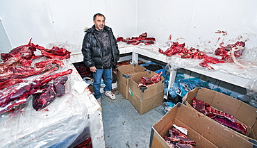 Local Inuit man, in freezer house. Kangiqsujuaq, Quebec, Nunavik, Canada, North America  .Everything from Arctic Char (fish) to Reindeer, Polarbear and whale meat is stored in the freezer house, in which certain town members can access and store hunted foods and skins.