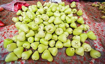 Wax Apples (Syzygium samarangense), multiple, sold at market.  Kota Kinabalu, Sabah, Borneo, Asia