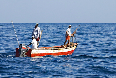 Whale hunters. Note the typically small boat and home made harpoon- an adapted rifle. Eastern Caribbean