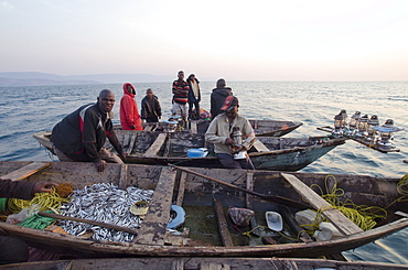 Fishermen on Lake Tanganyika early morning fishing for cichlids to sell in the local fish market, Zambia, Africa