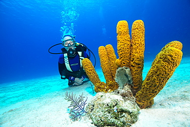 Pensioner enjoying a dive on the reef, Turks and Caicos, West Indies, Central America
