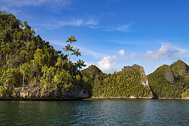 Karst limestone formations in Wayag Island, Raja Ampat, West Papua, Indonesia, Southeast Asia, Asia