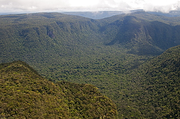 Aerial view of mountainous rainforest in Guyana, South America