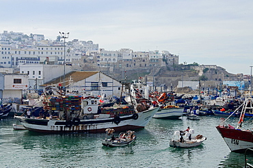 Fishing boats leaving Tangier fishing harbour, Tangier, Morocco, North Africa, Africa