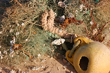 Fishing gear washed up on the beach, Southern Morocco   (RR)