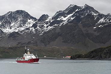 British Antarctic Survey's research vessel James Clark Ross leaving King Edward Point and Allardyce Range behind, South Georgia, Polar Regions