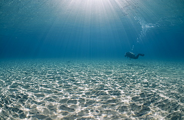 Solitary scuba diver in shallow sandy bay, with sun beams, Naama Bay, Sharm El Sheikh, Red Sea, Egypt, North Africa, Africa