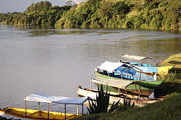 With such demands for Lake Victoria's Nile perch, the value of the fishery has risen considerably. Labour inflows into the fishery have increased along with growing demand. In 2004, there were 51,712, boats on the lake and 153,066 fishermen. Jinja, Uganda, East Africa