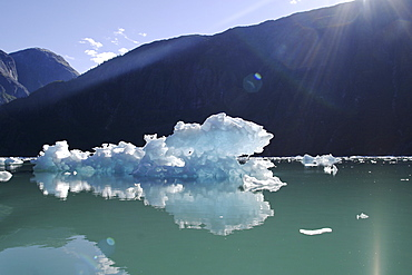 A very unusual iceberg calved from the Sawyer Glacier in Tracy Arm in southeast Alaska, USA.