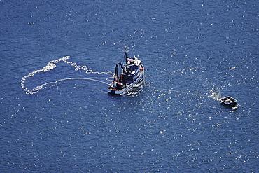 Aerial view of the Alaskan purse-seiner fishery for wild salmon off Point Augustus, Chichagof Island, Southeast Alaska, USA