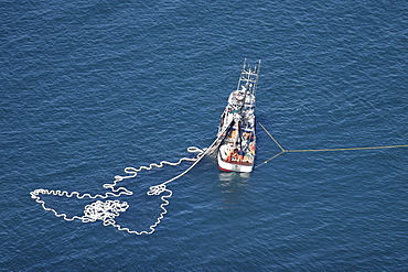 Aerial view of the purse-seiner fishery for salmon off Point Augustus, Chichagof Island, Southeast Alaska, USA.
