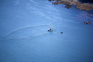 Aerial view of the purse-seiner fishery for salmon off Point Augustus, Chichagof Island, Southeast Alaska, USA. Bringing in the haul.   (RR)