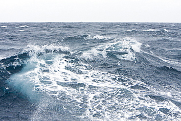 The Drake Passage from aboard the National Geographic Endeavour