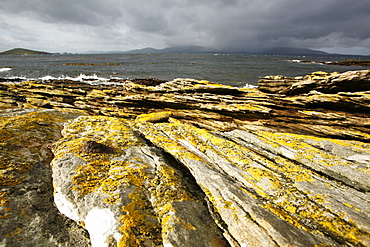 Storm-tossed seas on the shore on Carcass Island on the west side of the Falkland Islands.