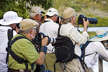 Lindblad Expeditions Guests eager to photograph flamingos on Floreana Island in the Galapagos Island Archipeligo, Ecuador. No model releases.