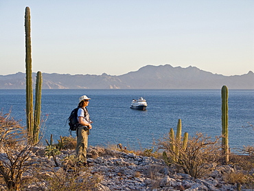 Lindblad expedition leader Sue Perrin viewing the Lindblad expedition ship National Geographic Sea Bird from atop Isla Monseratte in the Gulf of California (Sea of Cortez) and the Baja Peninsula, Mexico.